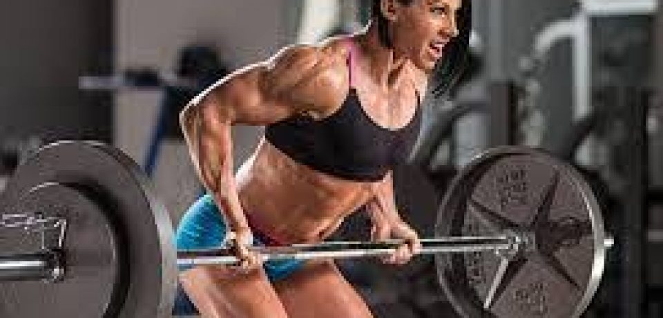 Purchase Best Fat Burners Online Lose Weight Naturally